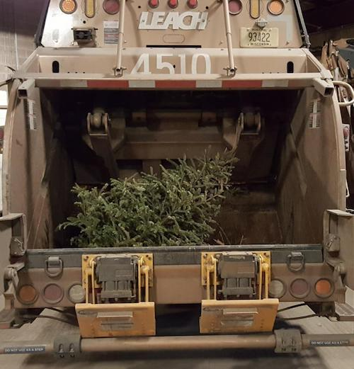 Holiday Tree in Truck
