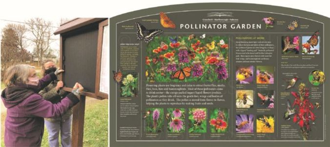 A neighborhood grant supported improvement--a sign showcasing pollinators and plants that can be found at that park