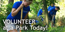 Volunteer at a Park today!