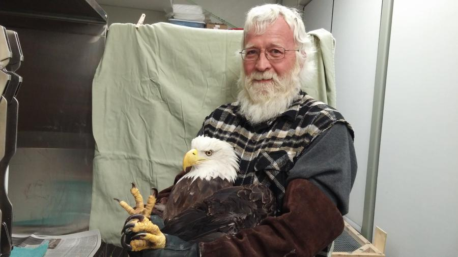 John Kraak holding a bald eagle