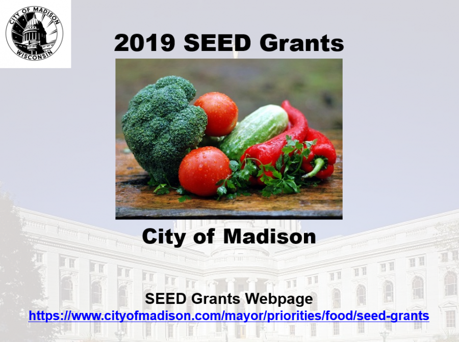 2018 SEED Grants Video Presentation