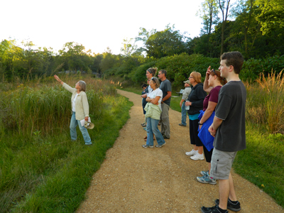 A Conservation Tour Group