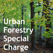 Urban Forestry Special Charge