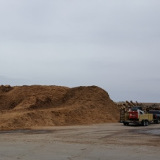 Mulch available at 121 E. Olin Ave. 30 gallons of material is free.  $17 for 31 gallons to 3 cubic yards. $17 per loader bucket