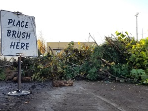 Take brush to a drop-off site. Do not place it at the curb.