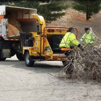 Curbside Brush Collection Begins April 1, 2019