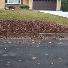 Due to the cold and the snow, a third round of yard waste pickup will occur.