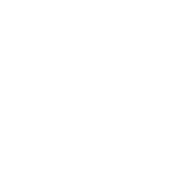 City of Madison Fleet Service logo, copyright City of Madison