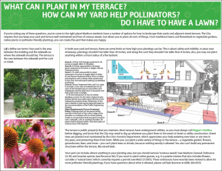 Terrace and Yard Planting Brochure