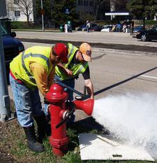 Flushing fire hydrant