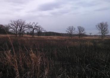 Cherokee Marsh North