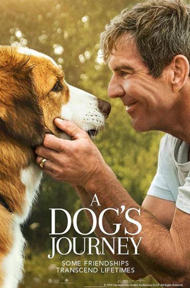 A Dog's Journey movie image