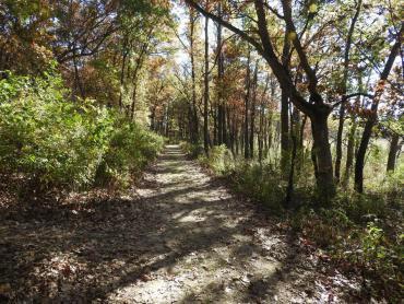 cherokee marsh north, fall