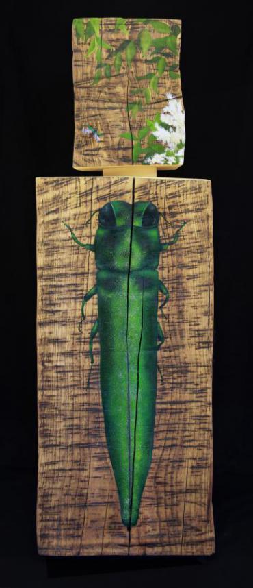 "Detail from ""Gathering Shadows"" by Thomas Ferrella depicting a green Emerald Ash Borer"