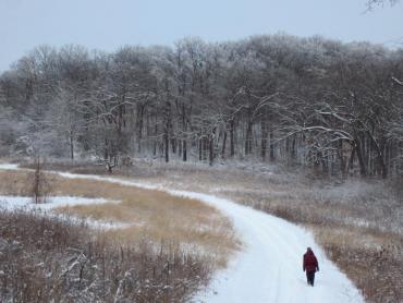 winter at owen