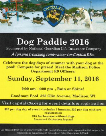 Dog Paddle 2016