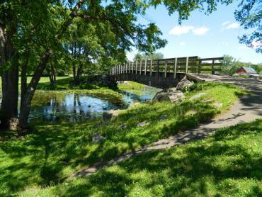 vilas ped bridge