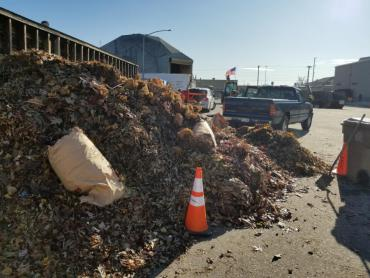 The leaf/yard waste pile at the Badger Rd drop-off site.