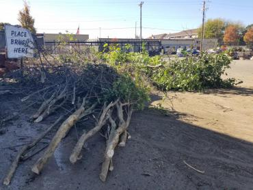 Small brush pile at the Badger Rd drop-off site