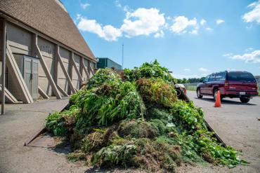 Big pile of yard waste at the South Point Rd drop-off site