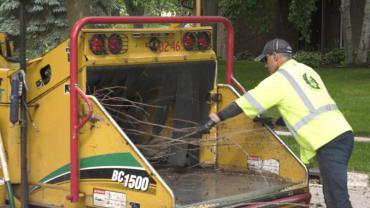 Employee feeds brush into wood chipper. Photo from 2019.