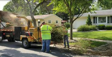 Two Streets Division employees feeding brush into a wood chipper.