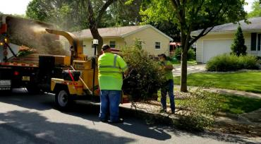 Crews collection brush. Curbside brush pickup begins April 1, 2019.