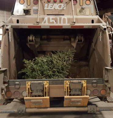 The first round of curbside tree collection begins January 2! Be sure to have your tree out in time.