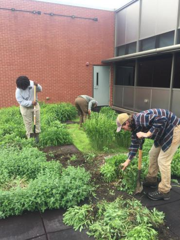 Engineering interns and Operation Fresh Start crew members work prepping the Emil roof garden for planting.