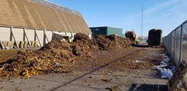 Piles of leaves were dumped at 402 South Point Rd before being hauled to the composter.