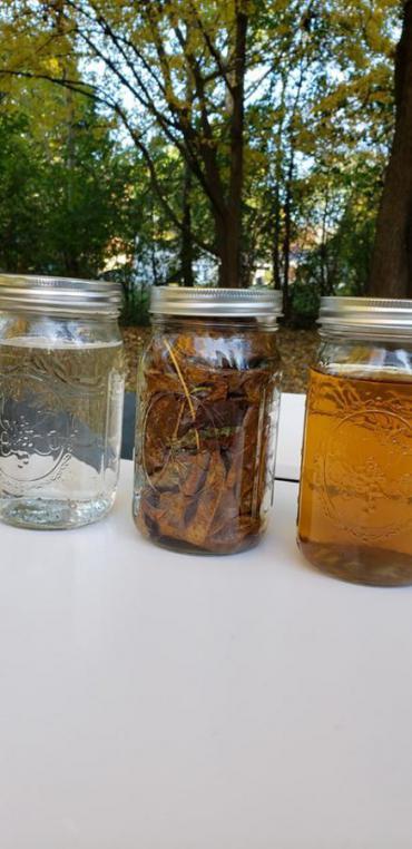 Leaf Tea Example