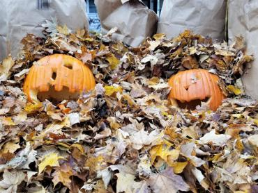 You can place pumpkins in with your leaf piles.