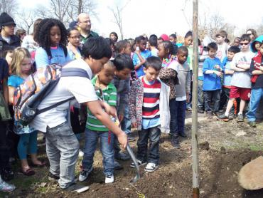 photo warner park tree planting