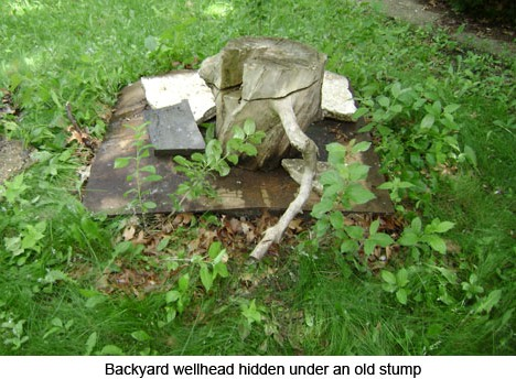 Backyard wellhead hidden under old stump